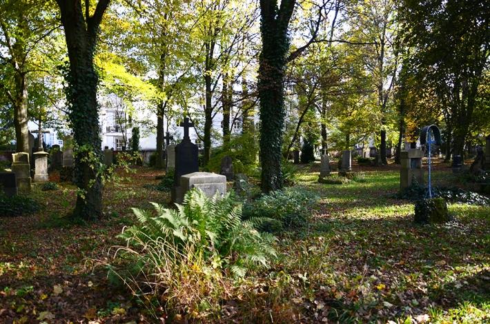 Antiguo cementerio del sur